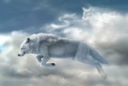 whitewolfinclouds